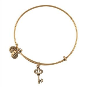 Alex and Ani Skeleton Key Charm Bracelet